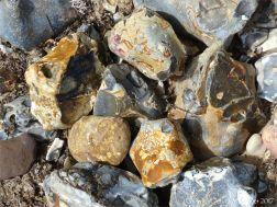 Stones and flint on the beach