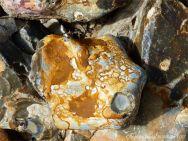 Patterned beach stone