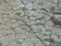 P1240577 Seatown Polygonal Cracks