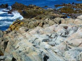 Rocks composed of volcanic ash (tuff) near Louisbourg Lighthouse in cape Breton, Nova Scotia.