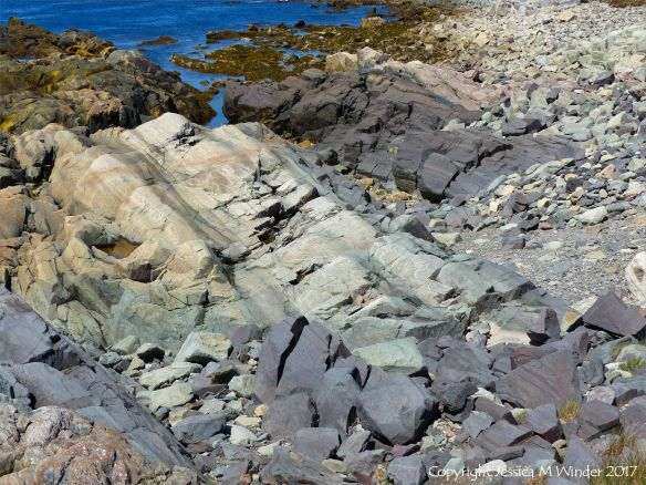 Coastal exposure of volcanic tuff rocks in Cape Breton