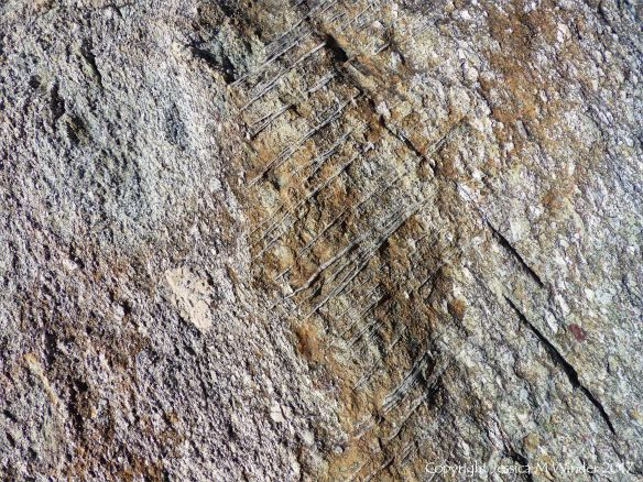 Detail of texture in volcanic tuff rock dating from the Neoproterozoic 575 million years ago