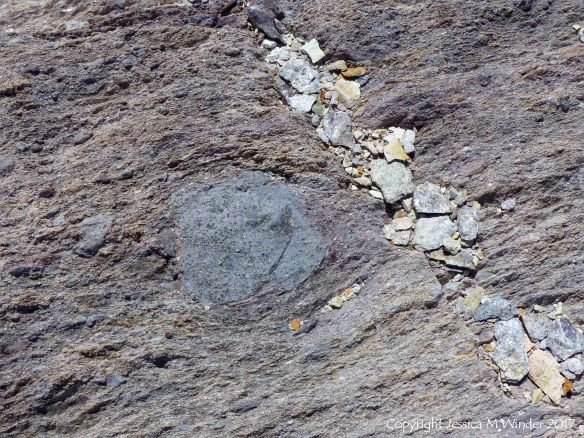 Volcanic bomb embedded in tuff