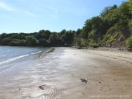View of South Beach Studland looking towards the corner where the worms burrow into chalk