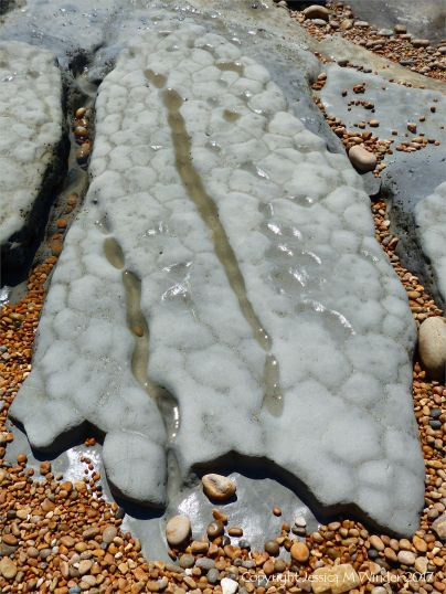 Erosion in intertidal mudstone layers at Seatown in Dorset