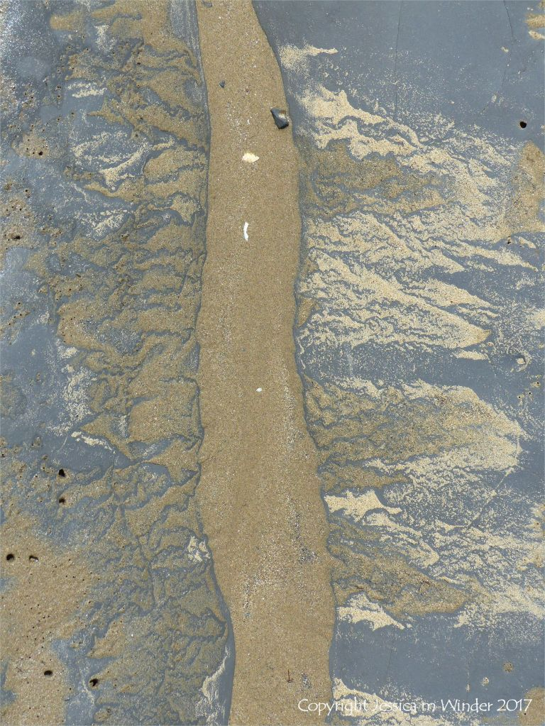 Sand-filled sinuous channel being eroded in an intertidal rock layer