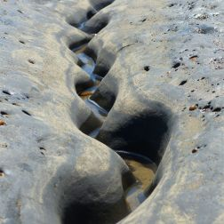 Winding channel being eroded through intertidal rock layers