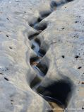Sinous channel being eroded in intertidal rock layers