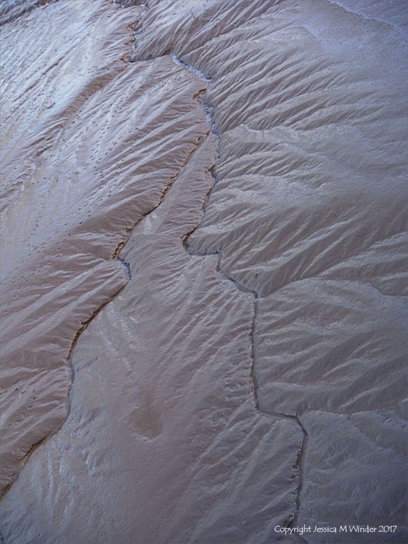 Pattern and texture in soft river mud at low tide