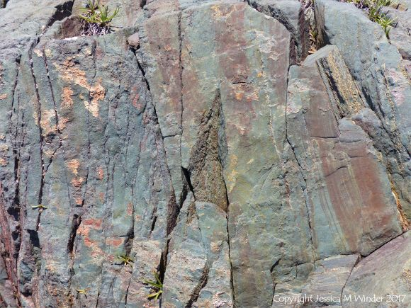 Rock texture in solidified intrusive lava