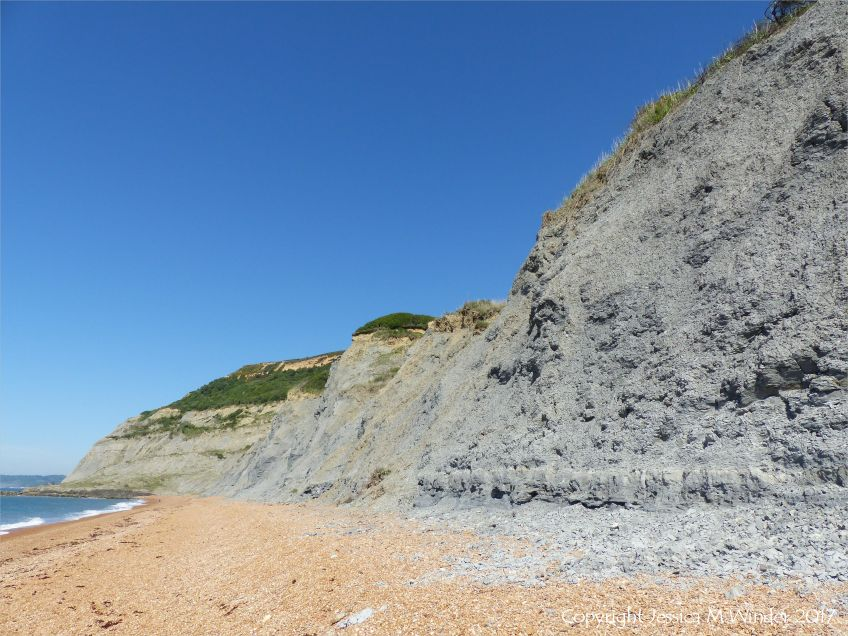 Context shot of the cliff of Green Ammonite Member rock at Seatown in Dorset, England.