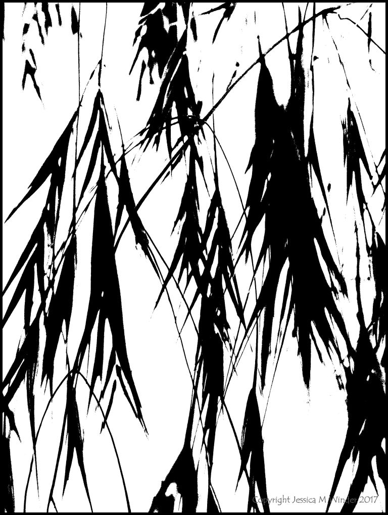 Black and white abstracted image of grasses