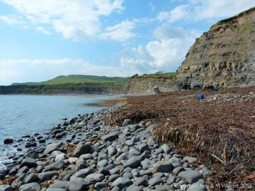 Kimmeridge Bay with seaweed strandline