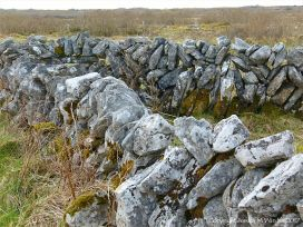 Dry stone walls on The Burren