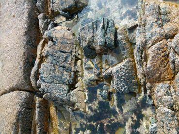 Natural pattern and texture in igneous rocks