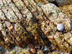 Errisbeg Townland Granite at Dogs Bay