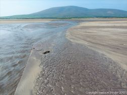 Ripples in the sand at Ventry Bay on the Dingle Peninsula in Ireland