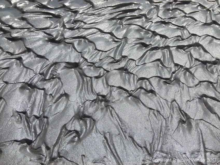 Close-up of sand ripple pattern on the beach at Ventry Bay on the Dingle Peninsula in Ireland