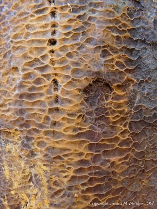 Natural pattern, colour, and texture in rusty iron