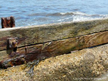 Wave-like water-etched woodgrain patterns in breakwater timbers