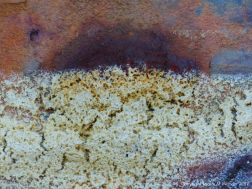 Close-up texture of dried sea foam on rusty iron