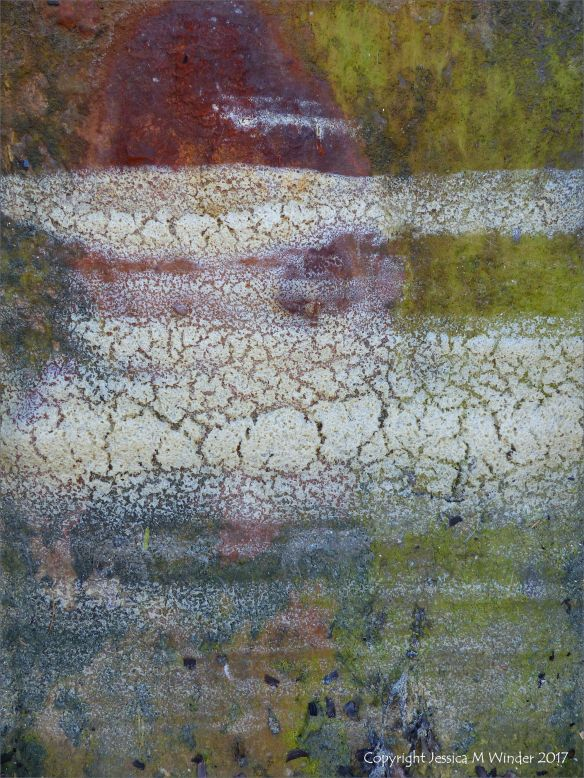 Dried sea foam on rusty iron