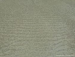 "Small ball-shaped sand pellets produced by the feeding activities of the ""Sand Bubbler"" Crab"