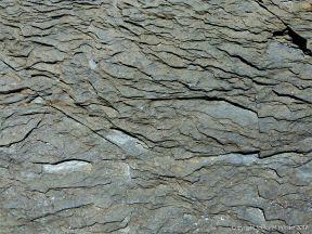Detail of rock texture and pattern at Cape Tribulation - meta-sedimentary rocks
