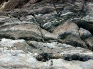 Rock texture and pattern at Cape Tribulation - meta-sedimentary rocks