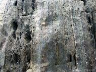 Close-up of rock texture and pattern at Cape Tribulation - meta-sedimentary rocks