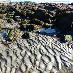 Sand ripple patterns between the boulders on a beach