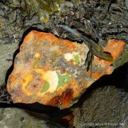 Piece of painted rusty metal on the beach