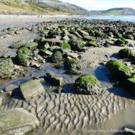 Rounded and fractured boulders on the beach with sand ripples