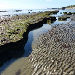 Rocky ledges and sand ripples on the beach at low tide