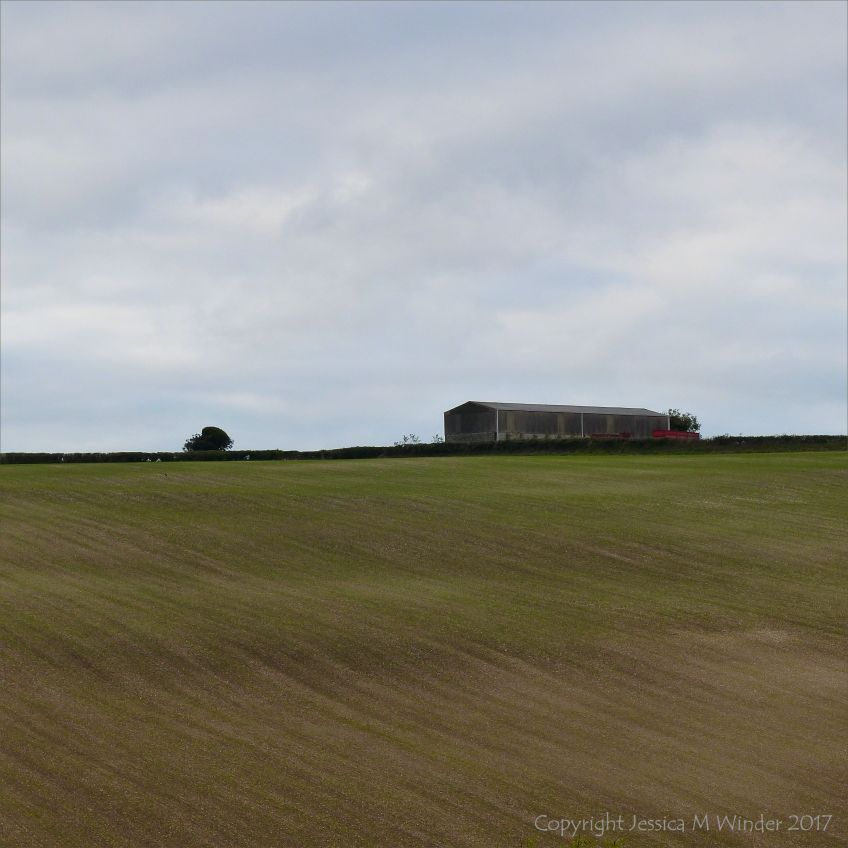 A barn on the crest of a hill under an overcast sky with newly sown field below