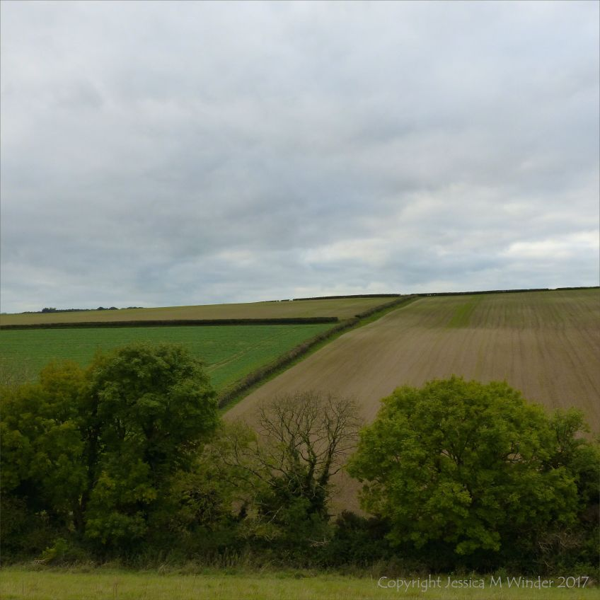 Countryside view of newly sown arable fields with hedge boundaries on a dull autumn day