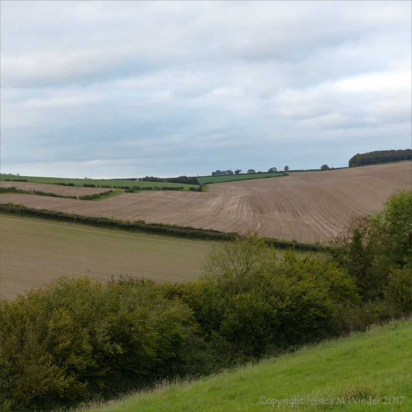 Rural view in the English countryside with arable fields in autumn