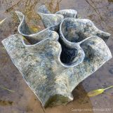 """Cornish Stream - Swirling (5)"" sculpture by Samantha Bunn at Kew Gardens"