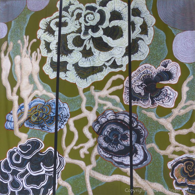 """Fungi Fascination"" by Claudia Wegner at Kew Gardens"