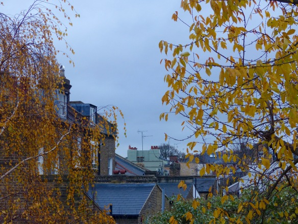 Roof tops and back gardens in an urban landscape with leaves still clinging to the trees in late November.