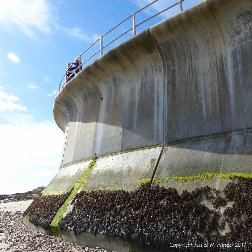 Looking up at the new sea wall at Church Cliffs in Lyme Regis.