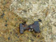 Concrete footing with ironwork from one of the old breakwaters on the beach below Church Cliff in Lyme Regis