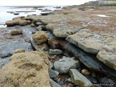 Alternating layers of pale hard Lias limestone and softer dark mudstone with holes made by bivalve molluscs like piddocks on the seashore