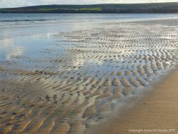 Soft autumn sunlight on wet sand ripples at low tide