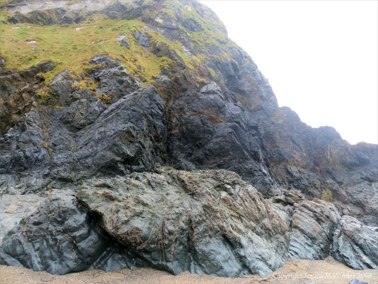 View of the Traboe Formation rocks with hornblende schist on the south side of Polurrian Cove in Cornwall