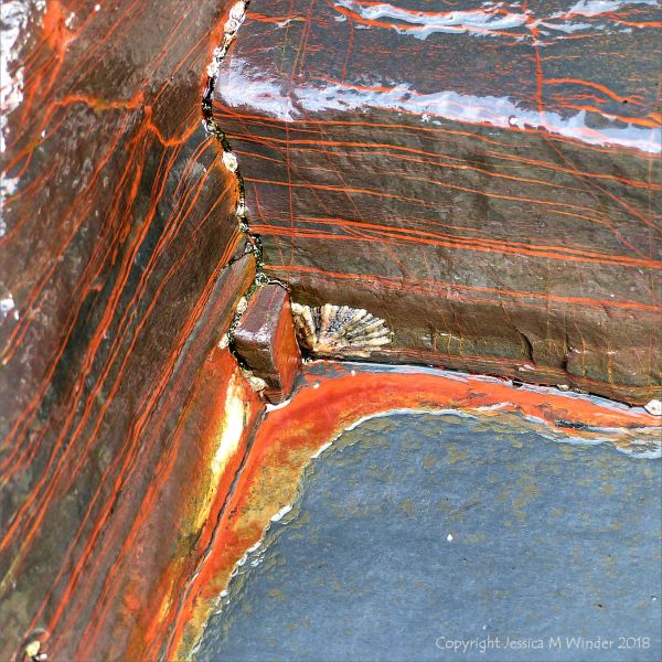 Red stripes in layered metasedimentary rock