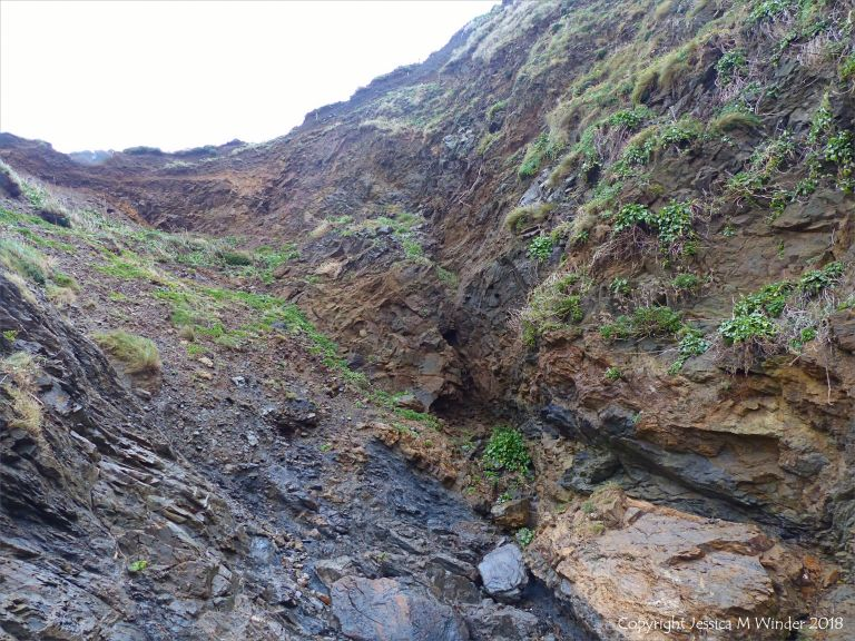 The scar in the cliff which is the Lizard Boundary Fault
