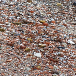Detail of the composition of an urban shore along a tidal river where water-worn historical building and domestic debris is mixed with natural flints and stones.