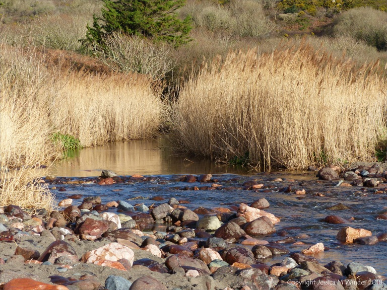 Stream flowing onto the beach at Kennack Sands