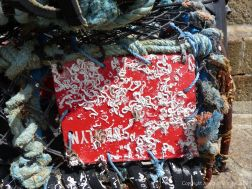Encrusting marine organisms on a lobster pot